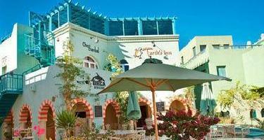 Hotel Turtle's Inn