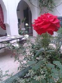 Hotel Riad Dar Bounouar