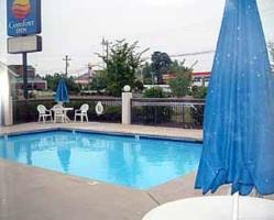 Hotel Comfort Inn Near High Point University