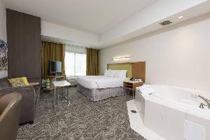 Hotel Springhill Suites Detroit Auburn Hills