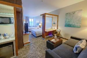 Hotel Springhill Suites Macon