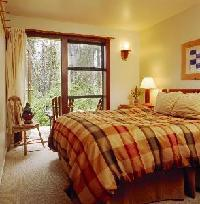 Hotel Middle Beach Lodge - Ground Floor Forest (#1to #7) Cb