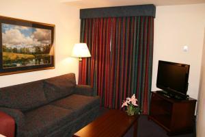 Hotel Hampton Inn & Suites Denver Tech Center