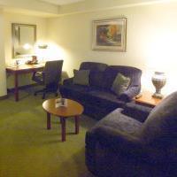 Hotel Hilton Garden Inn Detroit Downtown