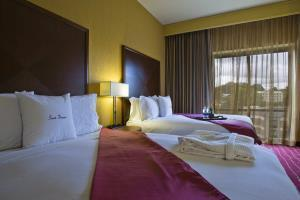 Hotel Doubletree By Hilton Asheville-biltmore