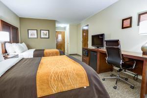 Hotel Comfort Inn Clemson University Area