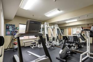 Hotel Comfort Inn & Suites Sacramento - University Area
