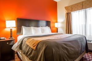 Hotel Comfort Inn & Suites Gordon Hwy