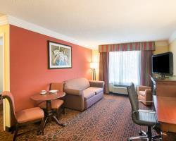 Hotel Comfort Inn & Suites I10 - Mason Road