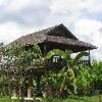 Hotel Phu Pai Art Resort