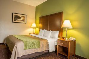 Hotel Comfort Inn Asheville Airport
