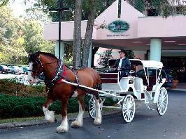 Hotel Hilton Ocala