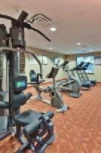 Hotel Holiday Inn Express & Suites Detroit Novi