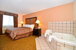 Hotel Best Western Plus Vineyard Inn
