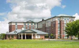 Hotel Homewood Suite Hilton Hartford South-glastonbury