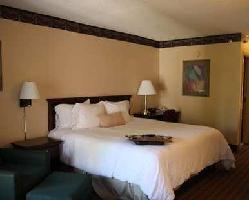 Hotel Hampton Inn Mcdonough