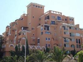 Apartamentos Fenix