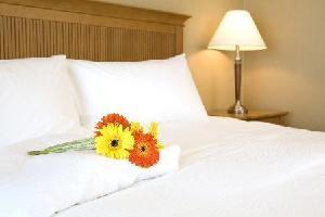 Coast Capri Hotel - Comfort