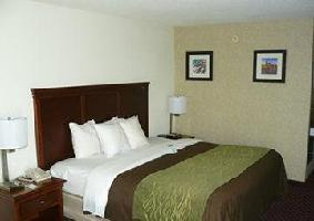 Hotel Comfort Inn Opryland Area
