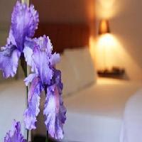 Hotel Arbre De Neu