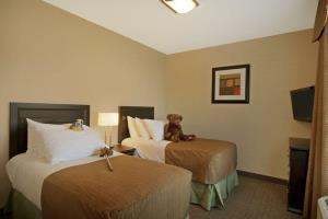 Hotel Best Western Plus The Inn At St. Albert