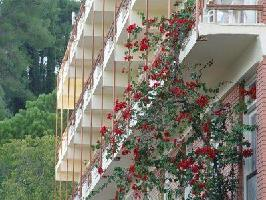 Hotel Neda (half Board)
