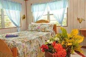 Hotel Oceanic View Exclusive Vacation Cottages