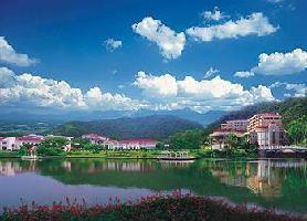 Hotel Lotus Villa