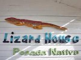 Hotel Posada Nativa Lizard House