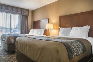 Hotel Comfort Inn & Suites Ambassador Bridge