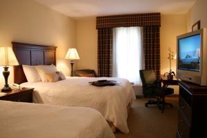 Hotel Hampton Inn & Suites Dobson