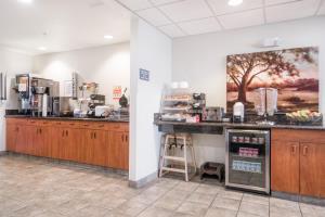 Hotel Microtel Inn & Suites By Wyndham Rice Lake