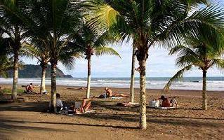 Hotel Blue Palm