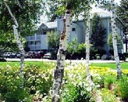 Hotel Beach Retreat & Lodge