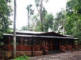 Hotel Selva De Laurel