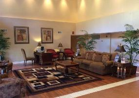 Hotel Best Western Tallahassee-downtown Inn & Suites