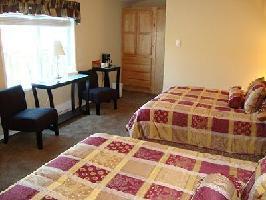 Hotel Helmcken Falls Lodge - Log Room