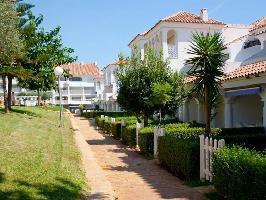 278057) Apartamento En El Centro De Alcossebre Con Internet, Terraza, Lavadora