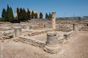 Alcúdia (apt. 633217)