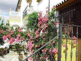 346861) Casa En El Centro De El Bosque Con Aire Acondicionado, Aparcamiento, Terraza, Lavadora