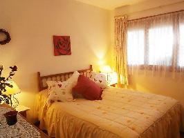 90787) Apartamento En El Campello Con Internet, Aparcamiento, Terraza, Jardín