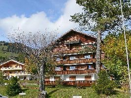 37951) Apartamento En El Centro De Schönried Con Internet, Aparcamiento, Balcón, Lavadora