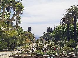 La Ciotat (apt. 135177)