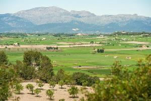 Santa Margalida (apt. 647428)