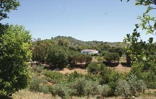 152483) Casa En Constantina Con Piscina, Jardín, Lavadora