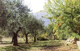 205487) Casa En Cala Gonone Con Aire Acondicionado, Jardín