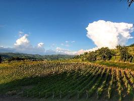 494741) Cortijo En Radda In Chianti Con Piscina, Terraza, Jardín, Lavadora