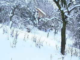44831) Casa En Bad Pyrmont Con Terraza, Jardín