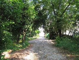 495314) Casa En El Centro De Zadar Con Aire Acondicionado, Aparcamiento, Terraza, Jardín