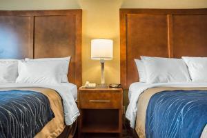 Hotel Comfort Inn The Pointe
